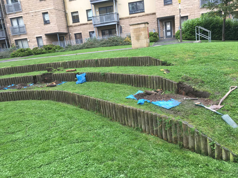 Hacking & Paterson, Hawkhill Close, Leith Snowdrop Services provide Grounds Maintenance throughout Edinburgh and Leith