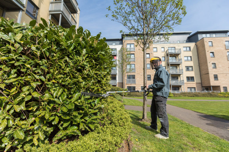 Hacking & Paterson, Hawkhill Close Leith Snowdrop Services provide Maintenance to Grounds in Edinburgh and Leith. If you are looking for professional commercial grounds maintenance for properties and communal areas in Edinburgh, Leith and East Lothian come to the best cleaning company... Snowdrop Services