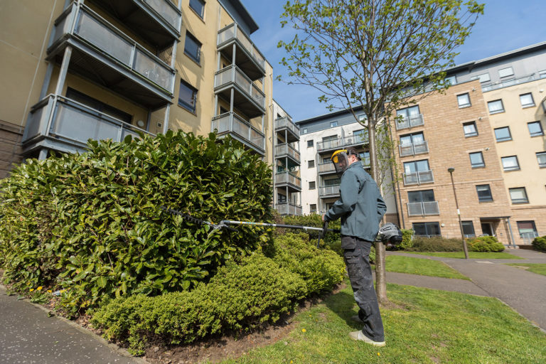 Snowdrop services offer professional commercial communal area cleaning, grounds maintenance, commercial gardening and litter picking. We look after all outside areas of shared communal areas and commercial factories and offices.